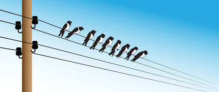 Illustration of several birds sitting on electric wires Illustration