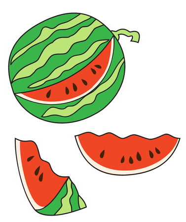 Illustration of a ripe watermelon with sliced slices on a white background