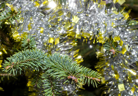Spruce branch close up on a blurred background with tinsel Archivio Fotografico - 126202413