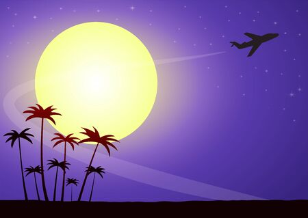 Illustration of airplane silhouette on a moonlit night against a starry sky with palm trees Stock Illustratie