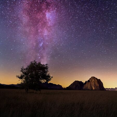 Lonely tree and milky way in summer, Dolomites,Italy Banco de Imagens