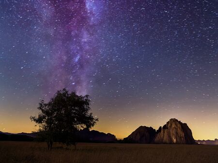 lonely tree: Lonely tree and milky way in summer, Dolomites,Italy Stock Photo