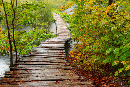 cascade mountains: Wood path in the Plitvice national park in autumn ,Croatia Stock Photo