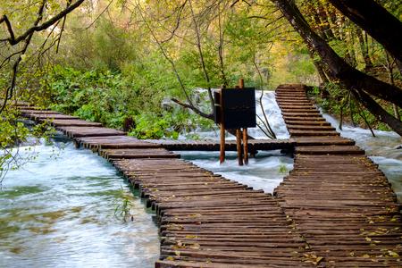 가, 크로아티아 플리트 비 체 국립 공원에서 나무 경로 스톡 콘텐츠