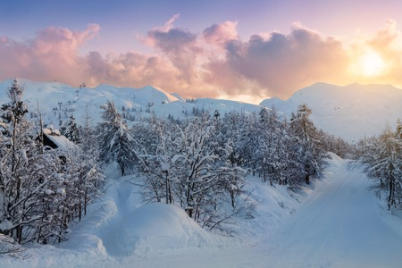 cosy: Cosy winter scene with snow covered trees in the mountains in Slovenia