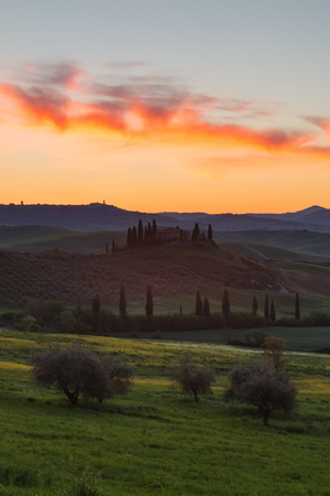 Farmhouse, green hills,cypress trees in Tuscany at sunset in Italy,Europe