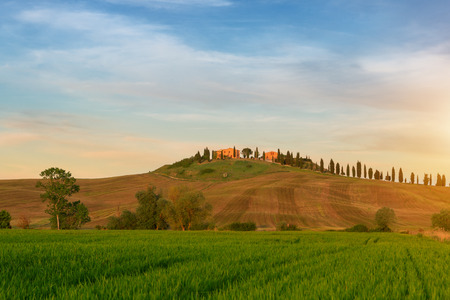 pienza: Typical Tuscany landscape springtime   in Italy,Europe