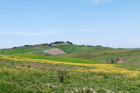 Typical Tuscany landscape springtime  in Italy,Europe