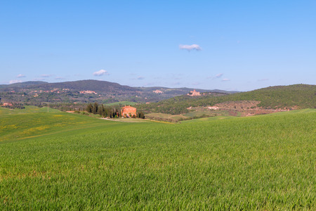 Typical Tuscany landscape, green hills springtime in Italy,Europe Stock Photo