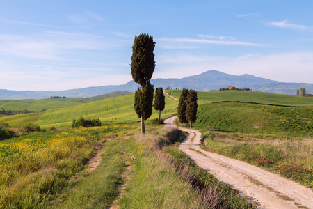 Typical Tuscany landscape and road , green hills springtime in Italy,Europe Stock Photo
