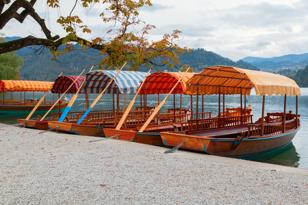 Lake Bled and the island with the church and traditional wooden Pletna at autumn in Slovenia