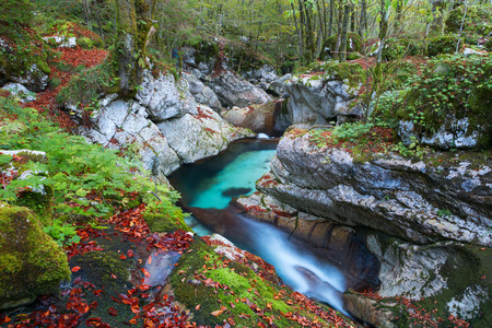 bohinj: Beautiful mountain stream in the Lepena valley at autumn in Slovenia,Europe