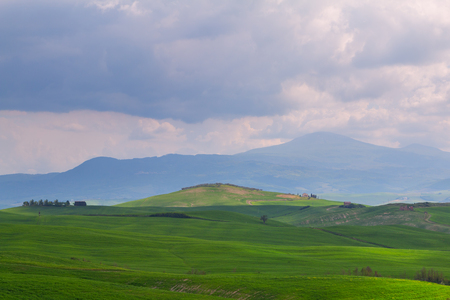 pienza: Tuscany landscape, beautiful green hills springtime in Italy,Europe Stock Photo