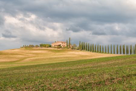 Tuscany landscape, beautiful green hills and cypress tree row springtime in Italy,Europe Stock Photo