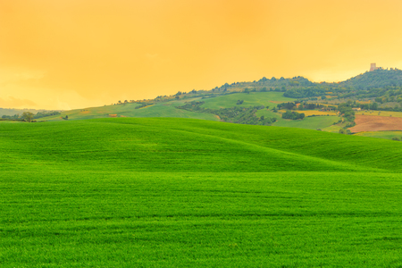 pienza: Tuscany landscape, beautiful green hills springtime at sunrise in Italy,Europe