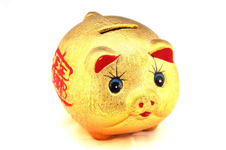 Chinese good luck pig photo