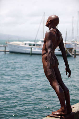 Statue in Wellington, New Zealand photo