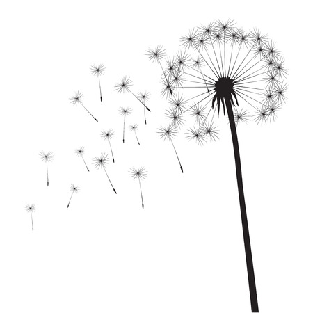 flying float: Black vector dandelion Illustration