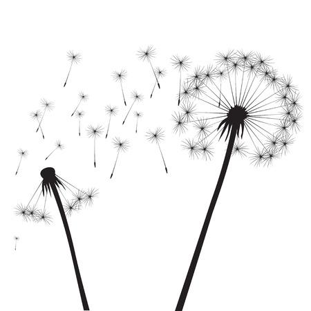 posterity: Black vector dandelion Illustration