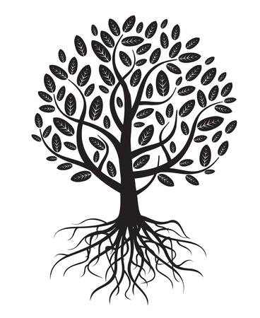 Vector tree with roots and leafs. Stock Illustratie