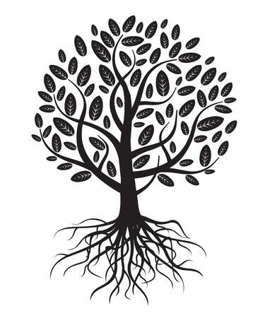arbol raices: Vector árbol con raíces y hojas. Vectores