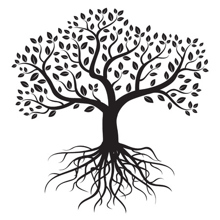tree silhouettes: Vector tree with roots and leafs. Illustration