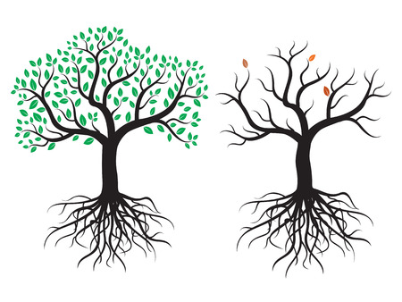 Vector trees with roots and leafs.