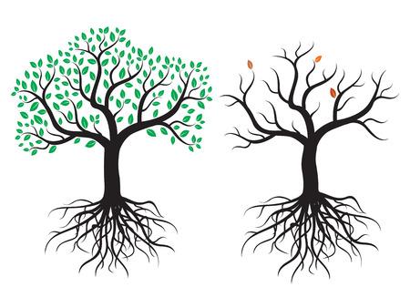 Vector bomen met wortels en bladeren. Stock Illustratie