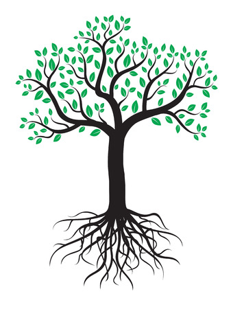 roots: Vector tree with roots and leafs. Illustration