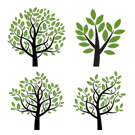 Set of trees with green leafs