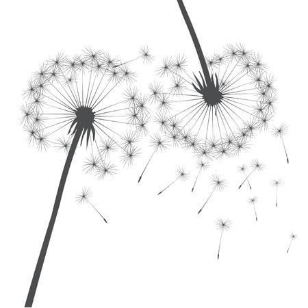 posterity: Vector dandelions