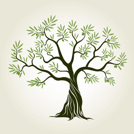 Olijfboom met bladeren. Vector Illustratie.