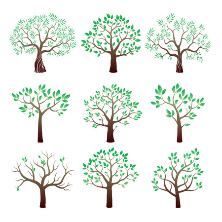 Set of color tree with leafs. Vector Illustration. Çizim