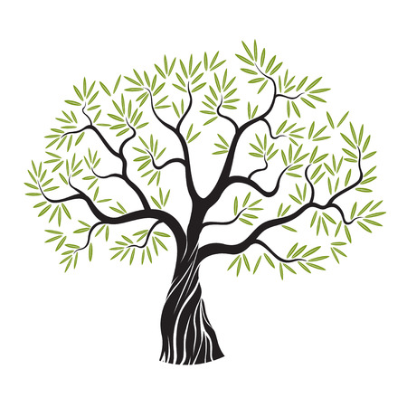 Olive tree with leafs. Vector Illustration. Stock Illustratie