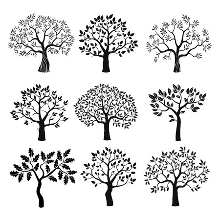 Set of black tree with leafs. Vector Illustration.