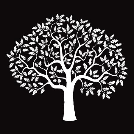 White Oak Tree and Black Background. Illustration