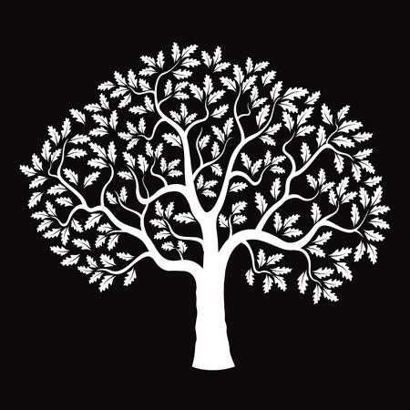 White Oak Tree and Black Background. 矢量图像