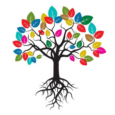 arbol raices: Las raíces de los árboles y hojas de color Vectores