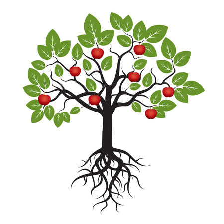 Tree Green Leafs and Red Apple. Illustration