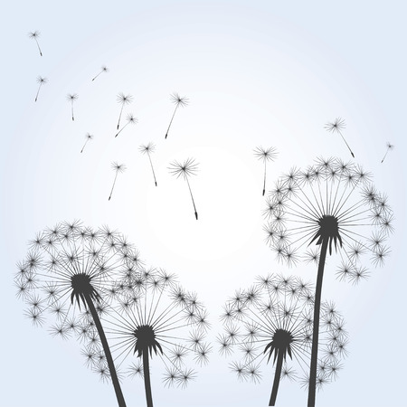 posterity: Dandelions and Blue Sky