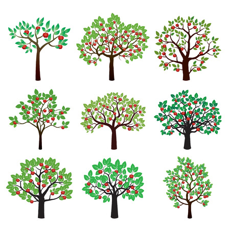 apple red: Set of Color Apple Trees. Vector Illustration