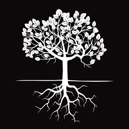 白い木と根。ベクトルの図。