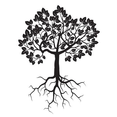 raices de plantas: Árbol y raíces Negro. Ilustración del vector. Vectores