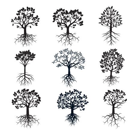 Set van zwarte bomen en wortels.