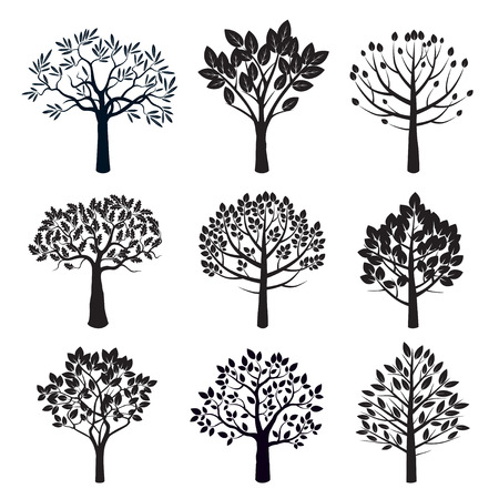 autumn garden: Set of Black Trees. Vector Illustration.
