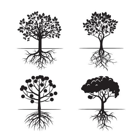 raices de plantas: Conjunto de �rboles y ra�ces Negro. Iconos del vector. Vectores