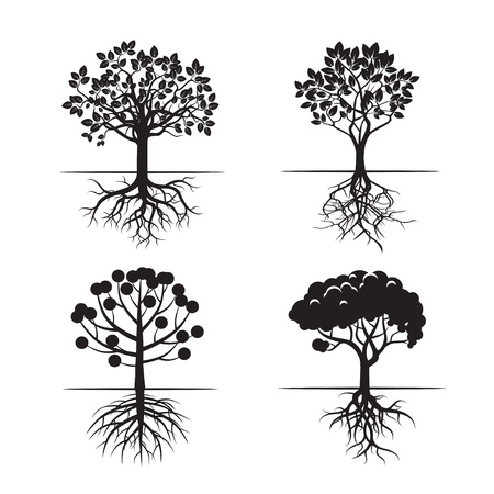 plant roots: Set of Black Trees and Roots. Vector Icons. Illustration
