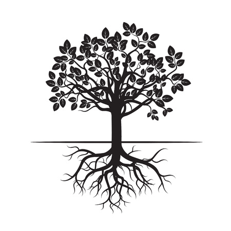 root: Black Tree and Roots. Vector Icon.