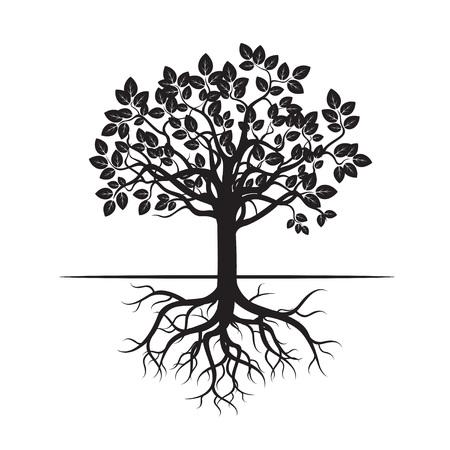 planta con raiz: Árbol y raíces Negro. Icono del vector. Vectores