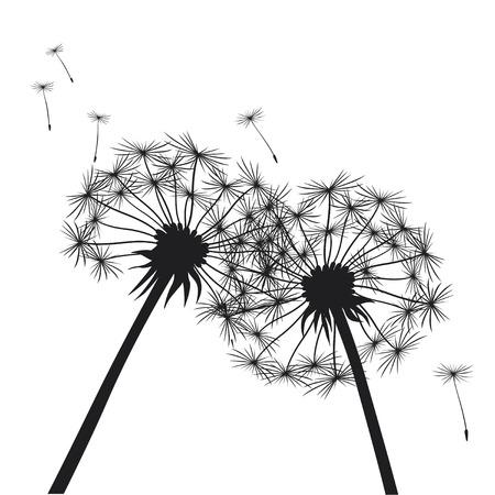 Romantic Illustration of Dandelions.